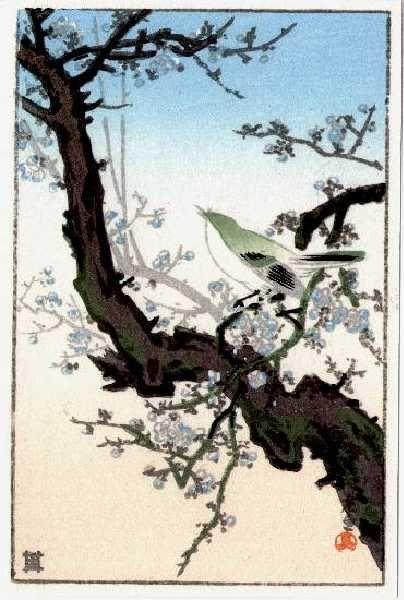 1940 - Koitsu, Tsuchiya - Bush Warbler (3)