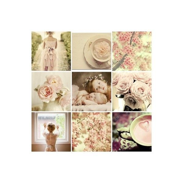 Magical - zr2's favourite images : rozne, bellas, flowers, beautiful,... ❤ liked on Polyvore