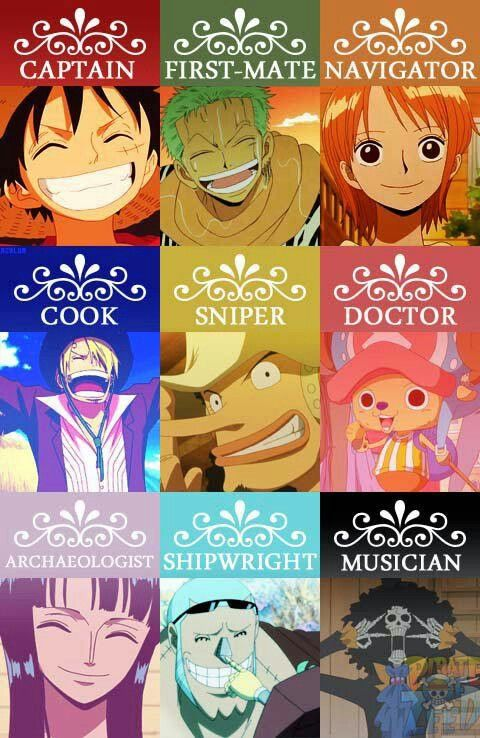 One Piece Straw-Hat Positions--MY BABYS