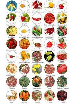 Resultado de imagem para tipos de pimentas usadas no brasil
