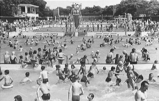 Zwembad het zuiderpark den haag google zoeken the hague in