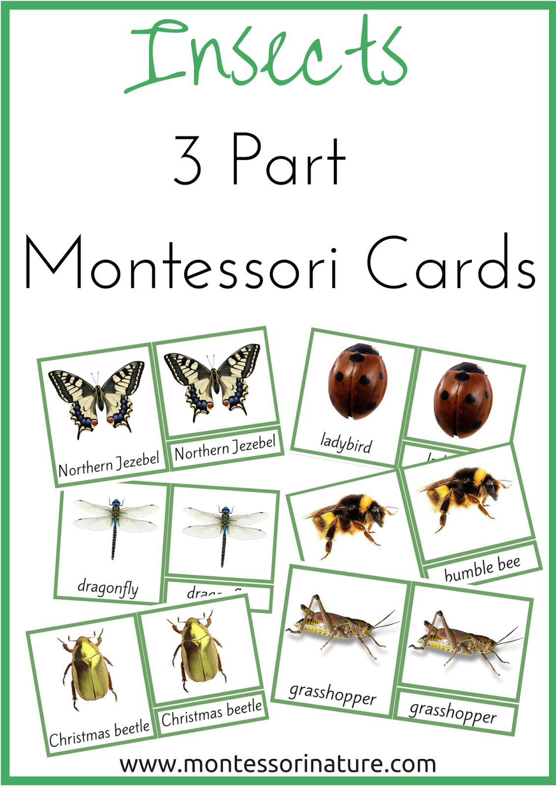 Do your children love learning about bugs and all sorts of creepy crawlers? Children's curiosity towards insects is so easily sparked, especially around Spring time. Well, I hope this printable won't be left without attention in your classroom. Montessori Nomenclature 3 Part Cards: Insects.     This printable contains: 20 x Labeled Picture (Control) cards …