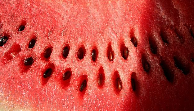 21 Foods You Should Never Eat If You Have Trypophobia