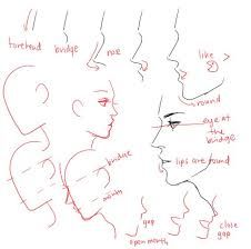 image result for side view face drawing reference tiger drawings