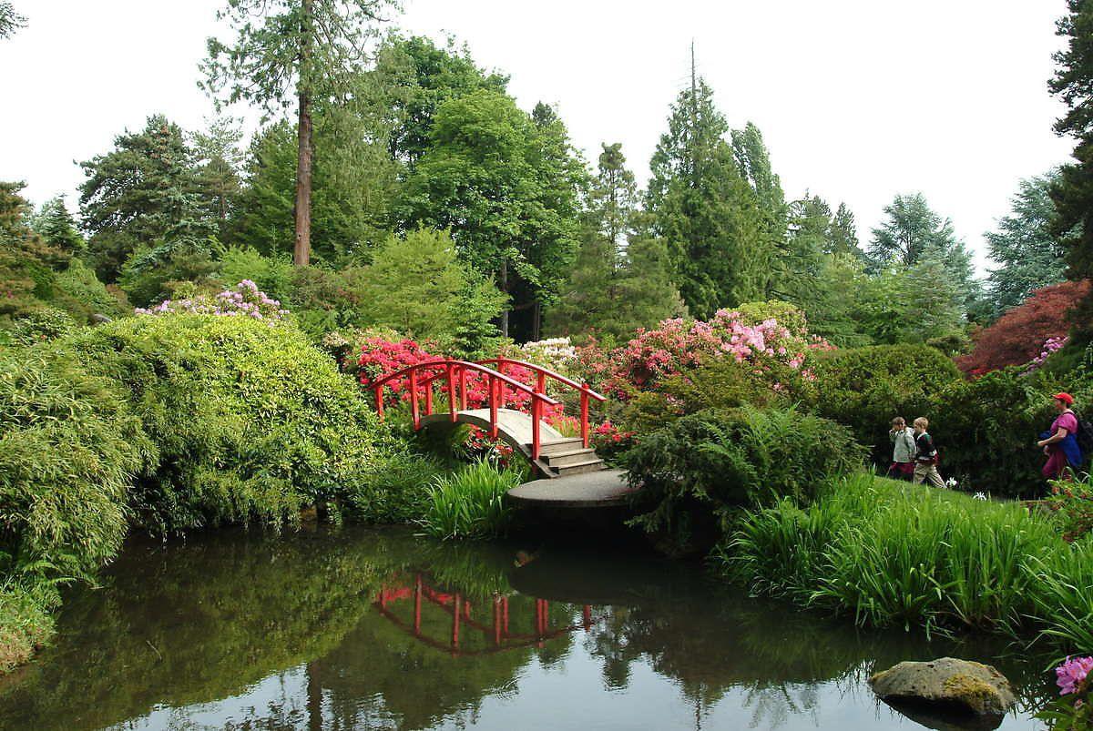 Kubota Garden Infrared (Seattle, Washington) Japanese