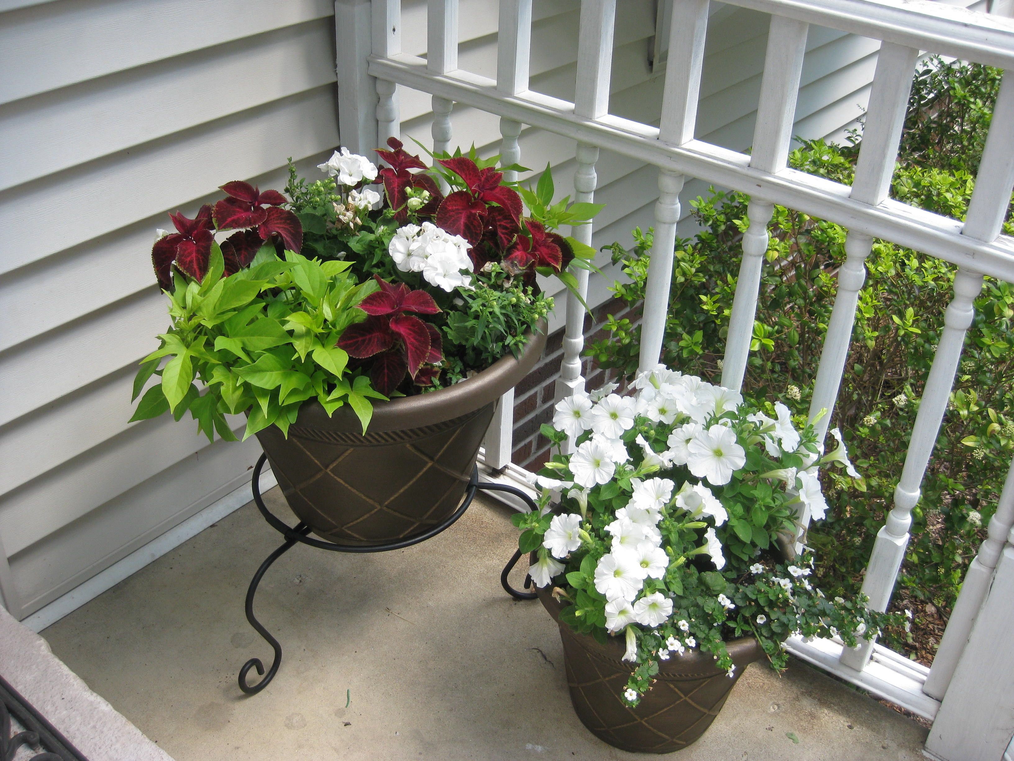 My Front Porch Flower Pots Assorted Annuals Front Porch Flower