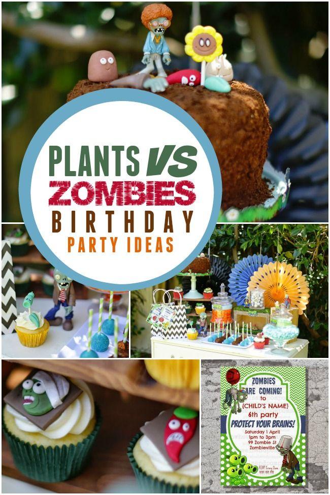 A Boys Plants Vs Zombies Birthday Party