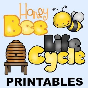 36 Life Cycle Printables - In All You Do