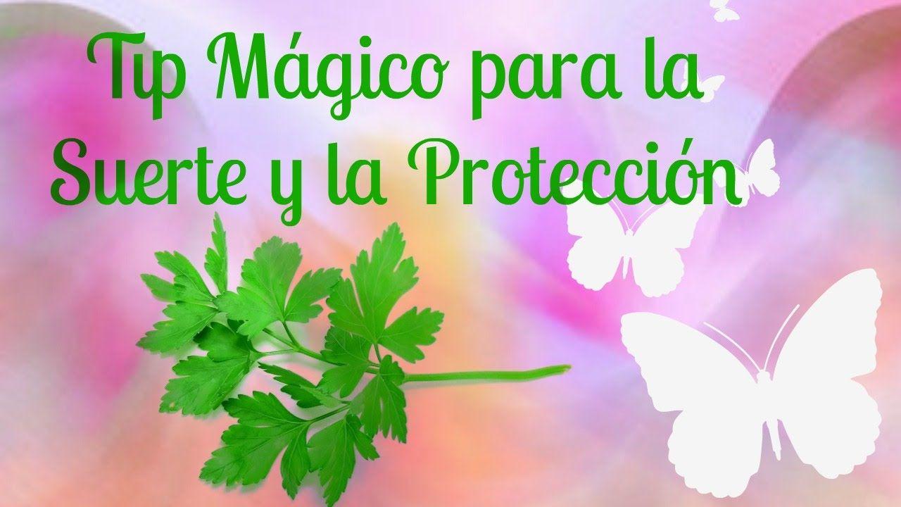 Tip Mágico para la Suerte y la Protección. Nuevo Vídeo!!!   La magia del perejil, la canela y el azúcar para que en tu casa o en tu negocio no falta la suerte y siempre estés protegido.