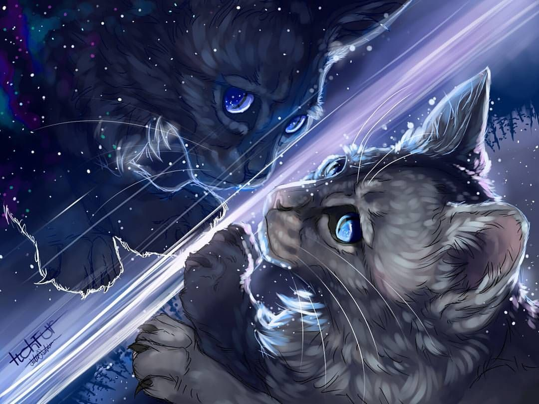 The Other Side Of Myself Cinderheart Cinderpelt Warriorcats