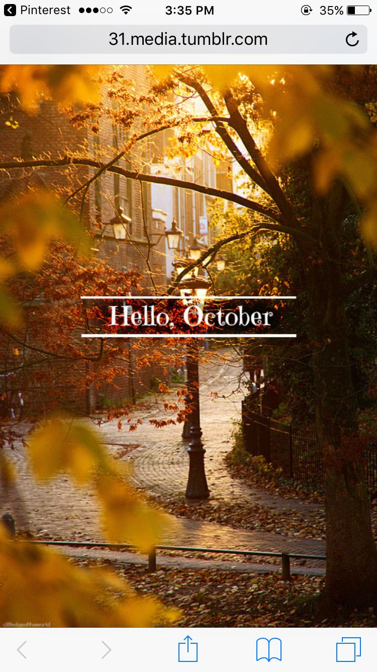 Halloween Utrecht 31 Oktober.Lost In An Autumn Wonderland Fall Air Months In A Year