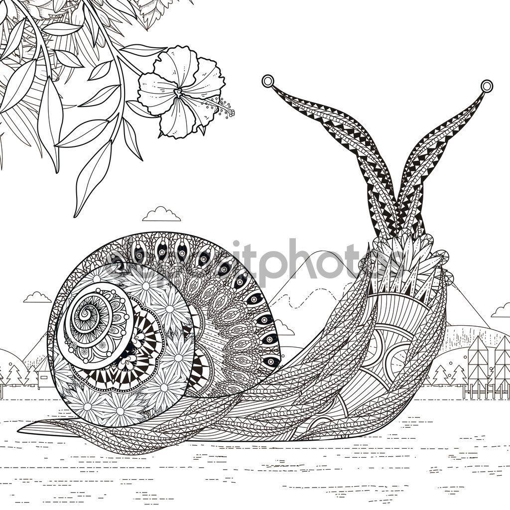 Página para colorear de caracol elegante - Ilustración de stock ...