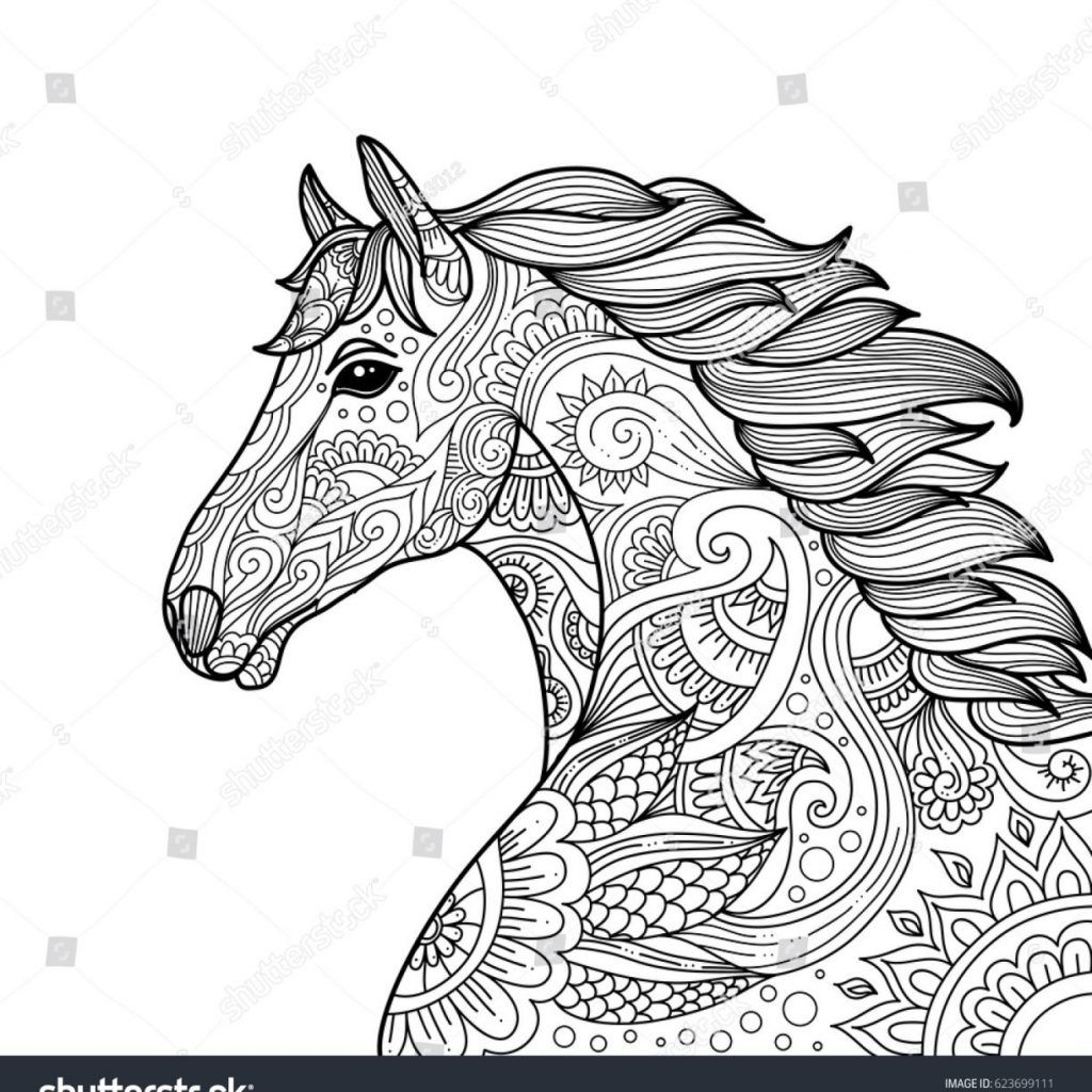 Horse Coloring Pages For Adults Freehorsecoloringpagesforadults Freeprintablehorsecoloringpagesfor Horse Coloring Pages Animal Coloring Pages Horse Coloring [ 1024 x 1024 Pixel ]