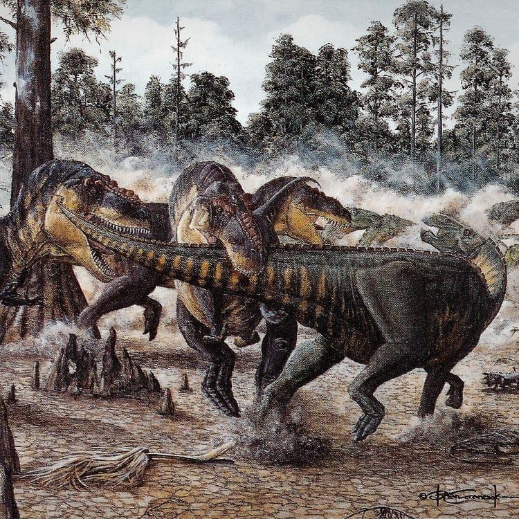 Битва динозавров в картинках