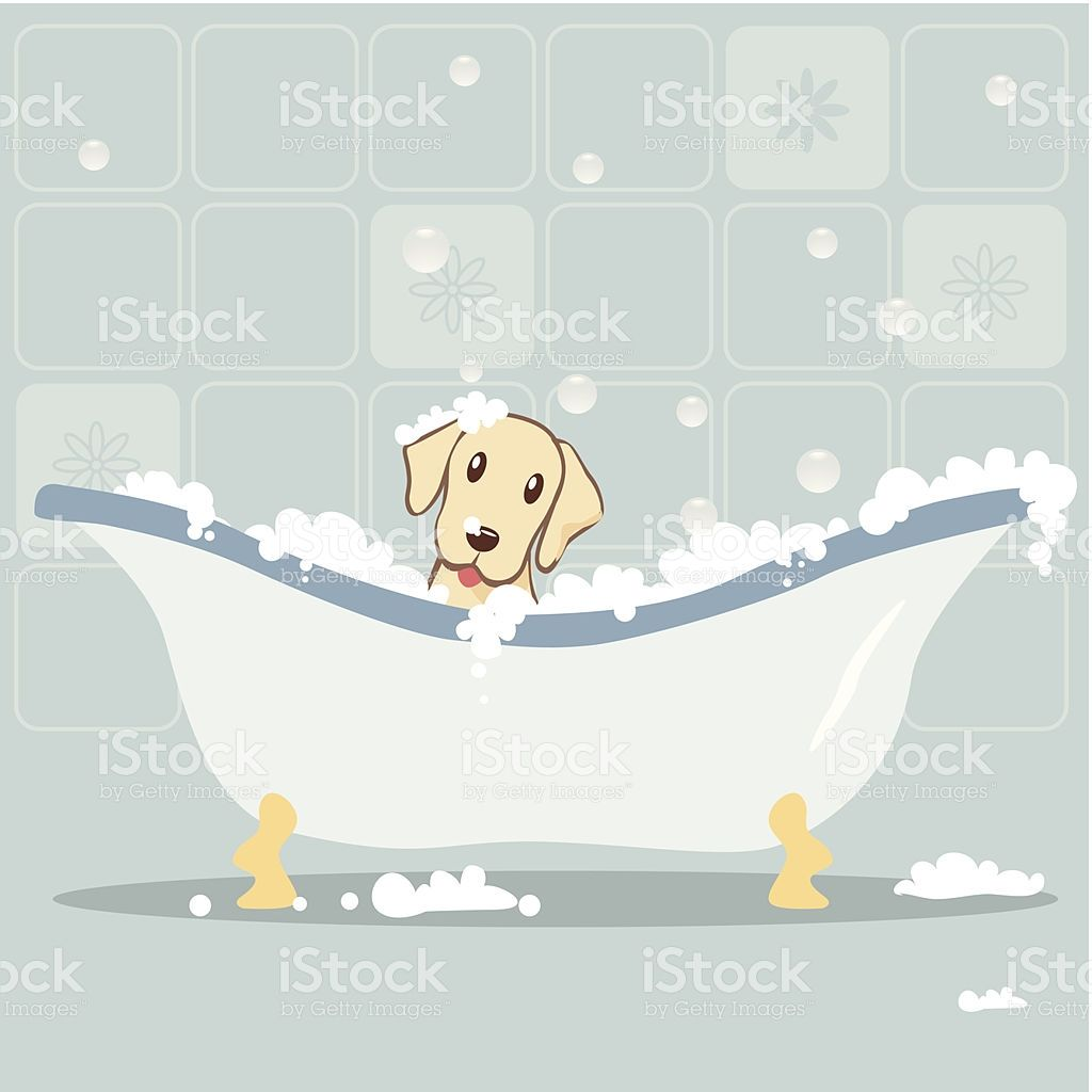 Dog Taking Bubble Bath Puppy Room Vector Art Free Vector Art