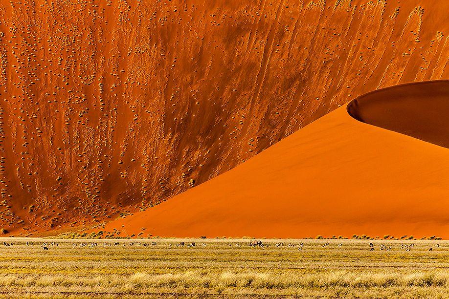 BEST OF | stefanforster.com, Namibia