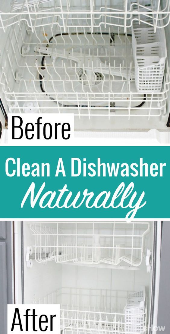 How To Clean Inside A Dishwasher Using Natural