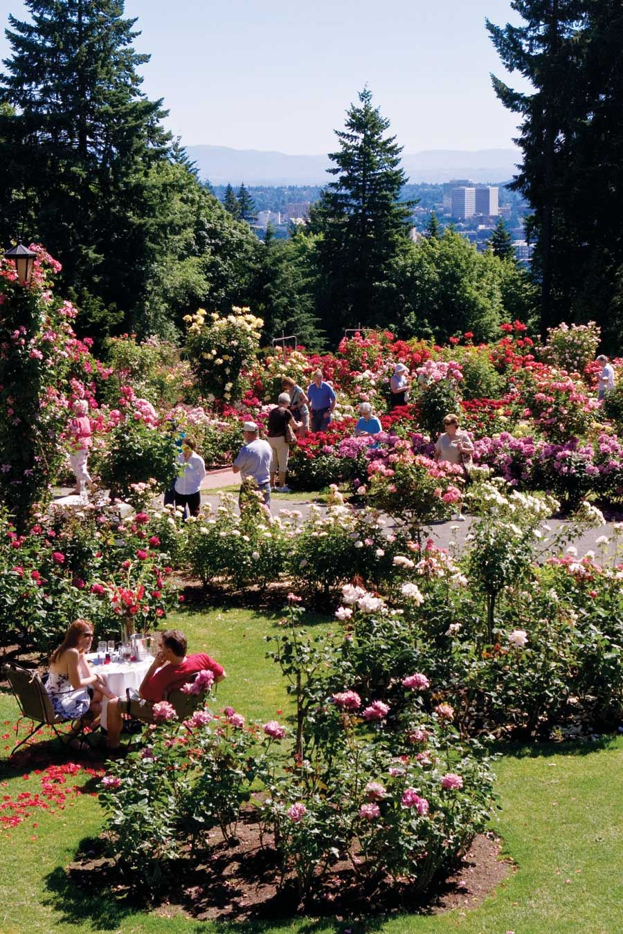 Natural Home Goes To Portland Rose Garden Portland Portland Parks Portland Travel