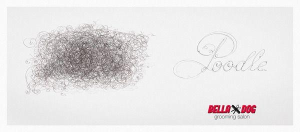 Реклама агентства Propaganda (Румыния) для салона по уходу за собаками Bella Dog. Пудель.