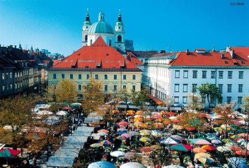 Ljubljana Slovenia Glavna Trznica Ljubljana Eastern European Cities Slovenia Travel