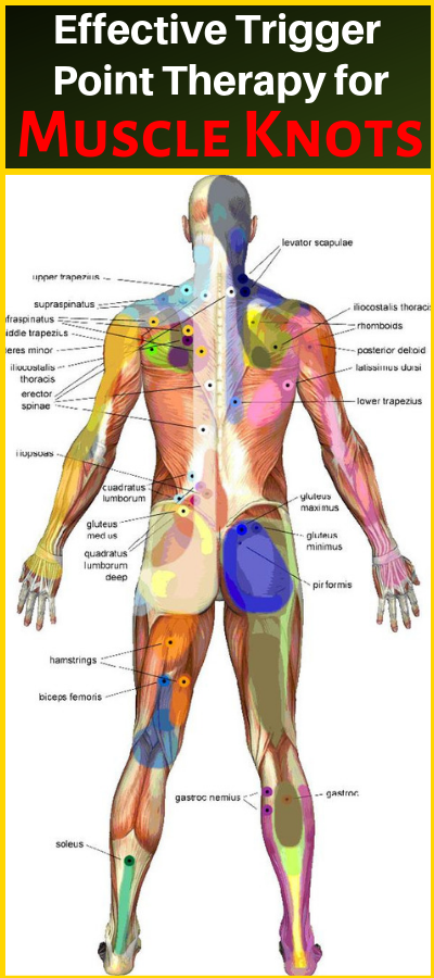 Can You Get Disability For Fibromyalgia In Illinois Effective Trigger Point Therapy For Muscle Knots Healthy National Massage Therapy Trigger Point Massage Reflexology Massage