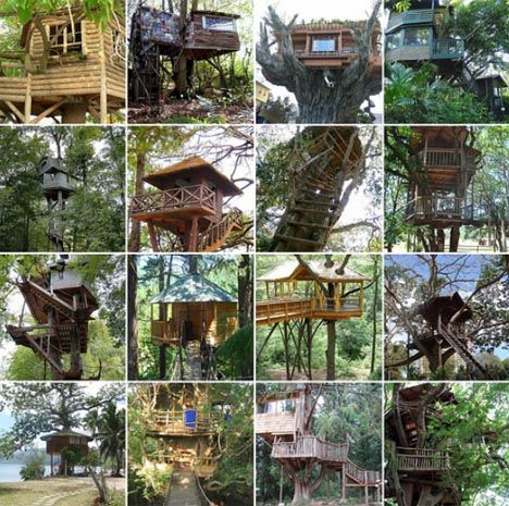 images about Tree house ideas on Pinterest   Tree houses       images about Tree house ideas on Pinterest   Tree houses  Tree house designs and Treehouse