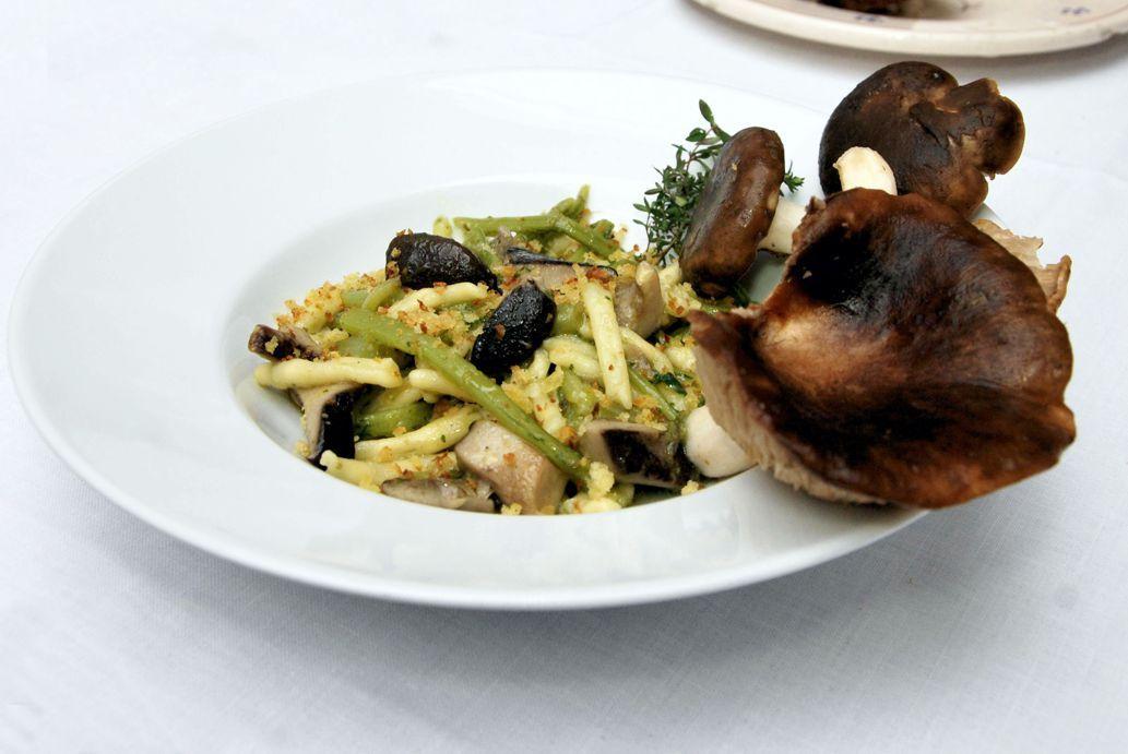 ferri di #pasta fatti a mano con funghi cardoncelli e cardoncelli (pianta selvatica appartenente alla famiglia dei cardi) della murgia