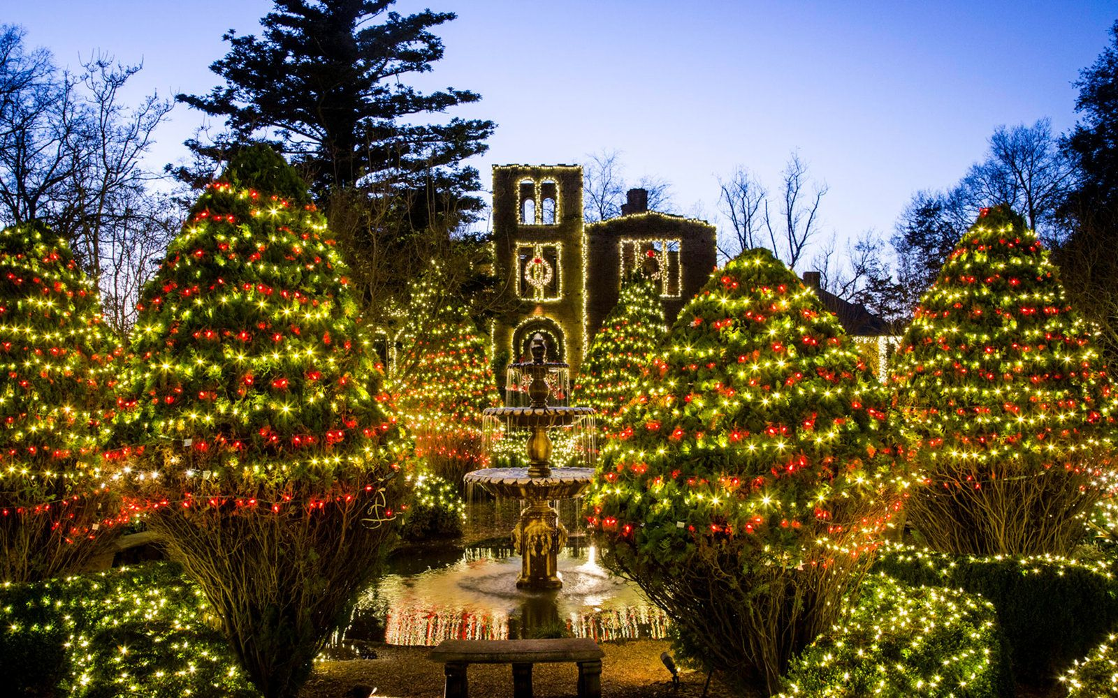 The Best Christmas Lights in Every State | Christmas lights, Georgia ...