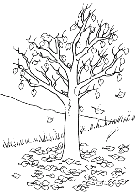 The Tree Began To Dry In The Spring Coloring Pages Tree Coloring Page Leaf Coloring Page Autumn Trees