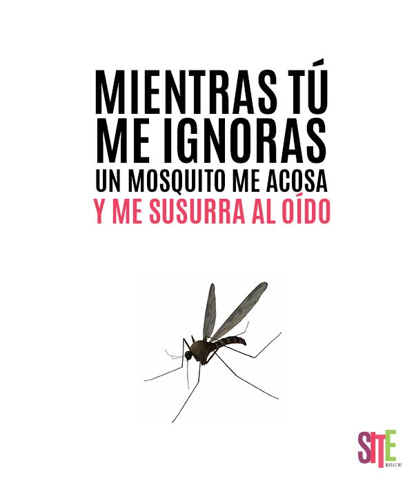 No me ignores!! :D #frases #sitemgazine #tipico