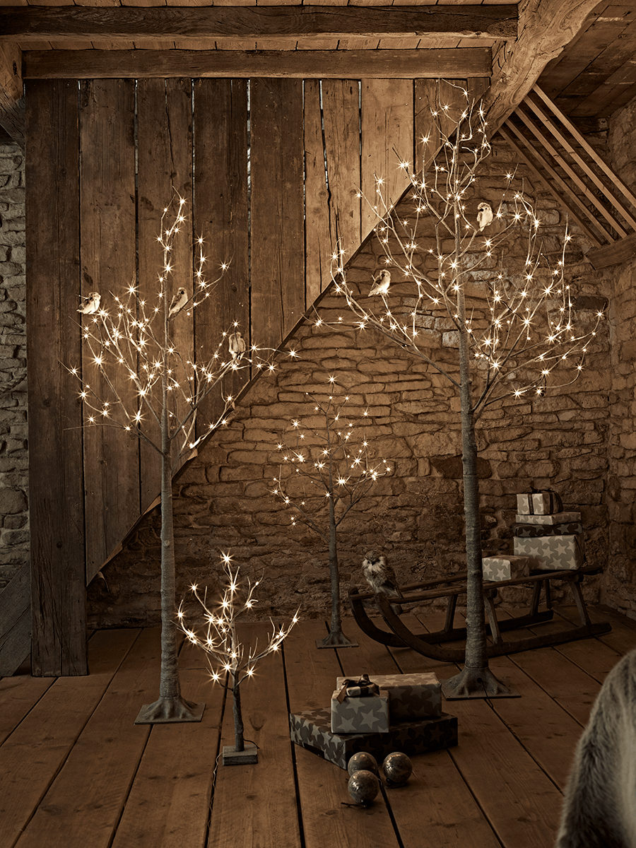 Birch indoor outdoor light up trees fall wedding pinterest birch indoor outdoor light up trees aloadofball Images