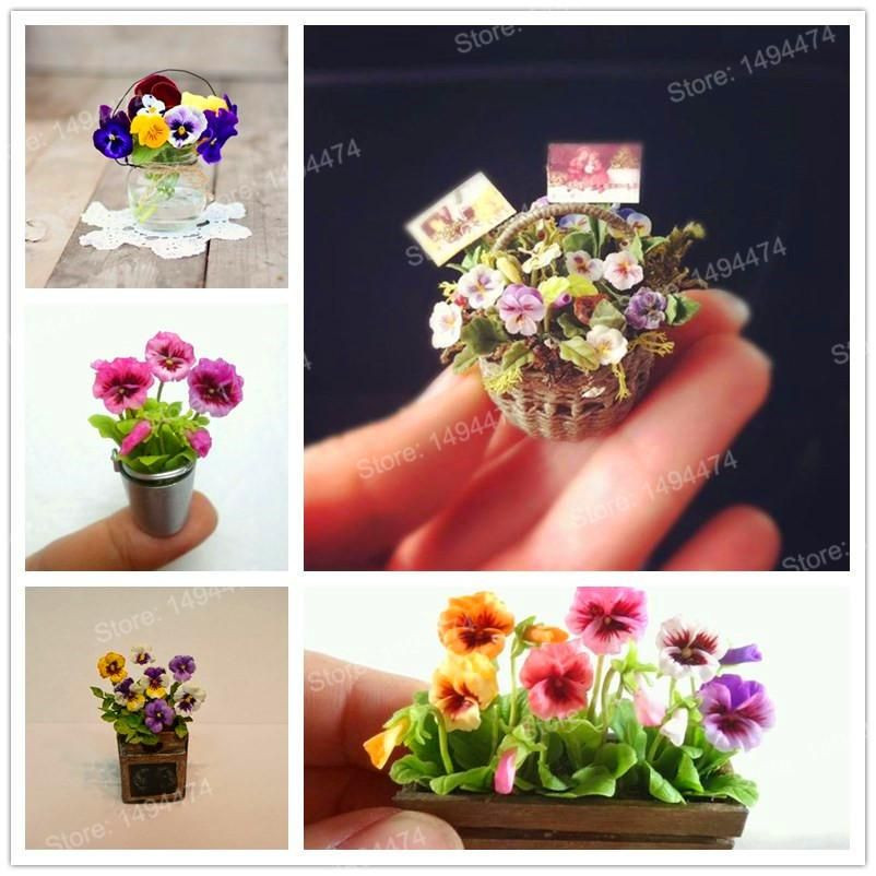 200pcs Mixed Color Rare Mini Pansy Seeds Wavy Viola Tricolor Flower Seeds Bright Beautiful Folwer Mini Bonsai For Home Garden Flower Seeds Mini Bonsai Pansies