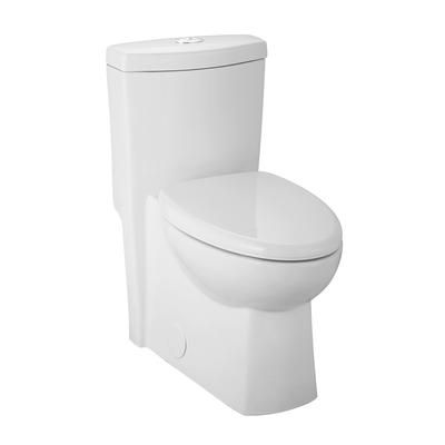 Glacier Bay   All In One Dual Flush Toilet With Concealed Trapway   TL