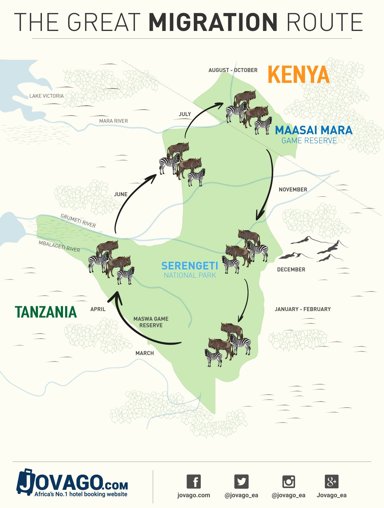 The Great Migration Infographic Jpg 1 292 1 707 Pixel Tanzania Travel Kenya Travel The Great Migration
