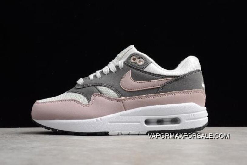 WMNS Nike Air Max 1 Vast Grey/Particle