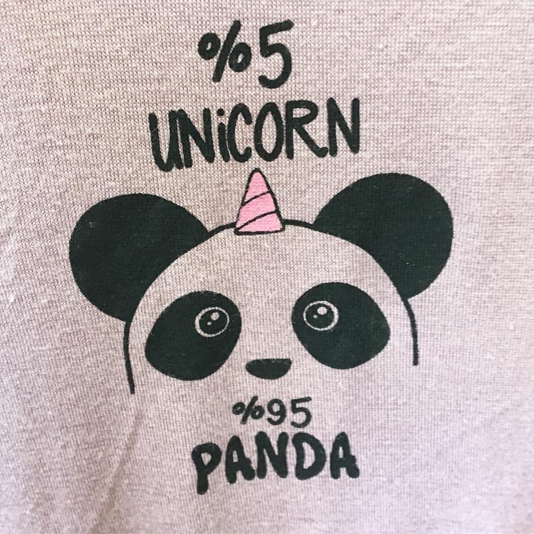 Panda Unicorn Pandacorn Instagood Cute Wallpapers Panda My Family Photo