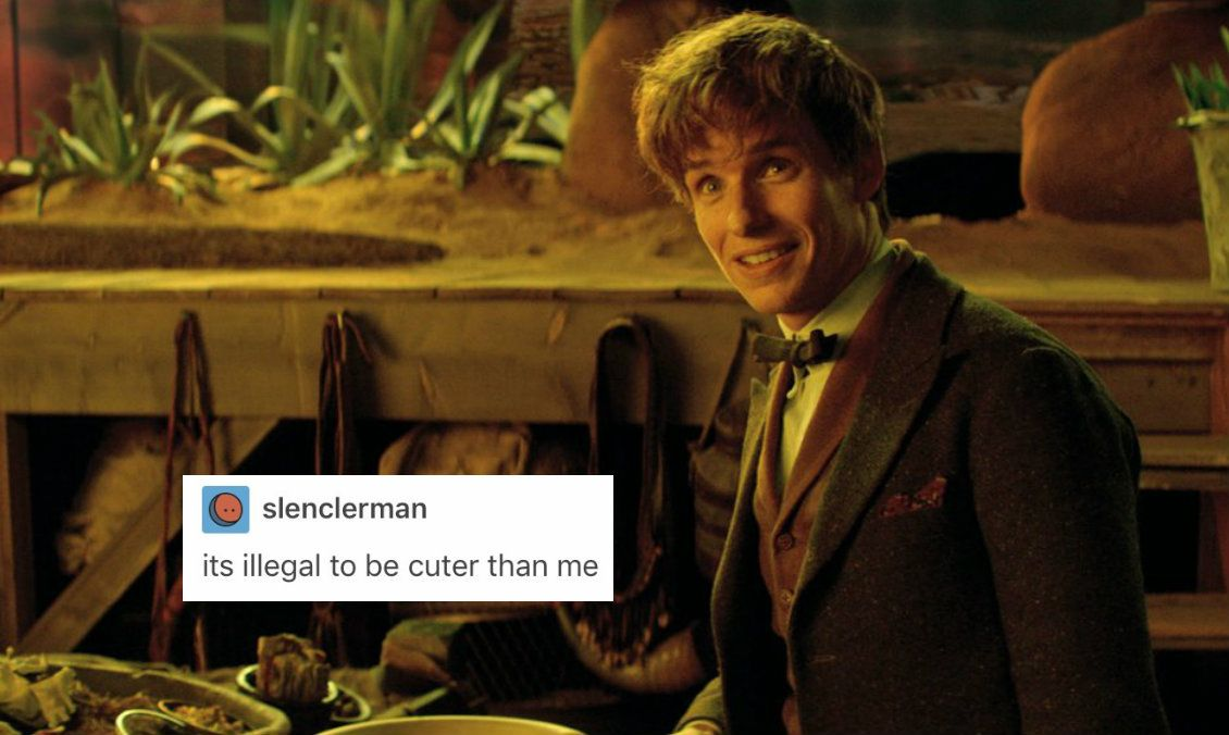 yeah newt *squints at his direction* awsh stop being cute i mean it ur grounded