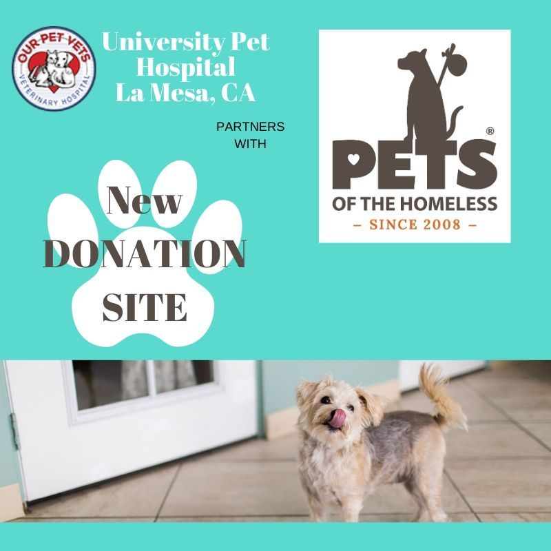 University Pet Hospital (With images) Animal hospital