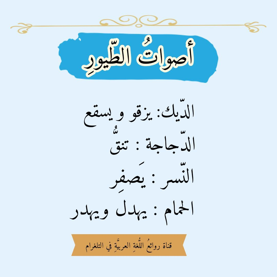 Pin By Soso On فوائد لغوي ة Beautiful Arabic Words Words Quotes