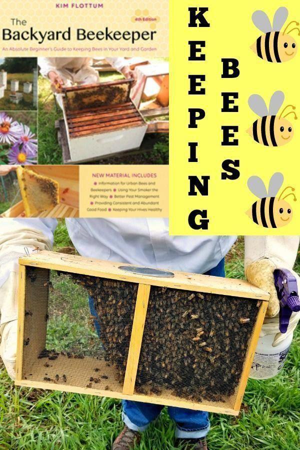 The Backyard Beekeeper, Kim Flottum, keeping bees, AD # ...