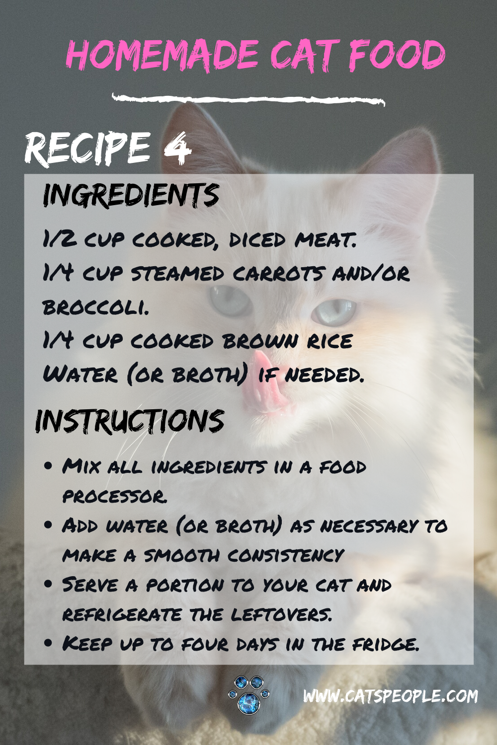 Homemade Cat Food Recipe Meaty Delicacy In 2020 Homemade Cat Food Raw Cat Food Recipes Healthy Cat Food