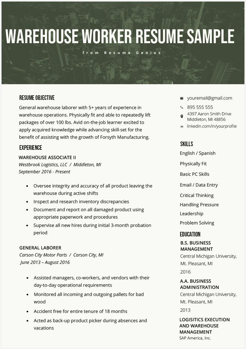 51 new resume examples for warehouse worker pics check