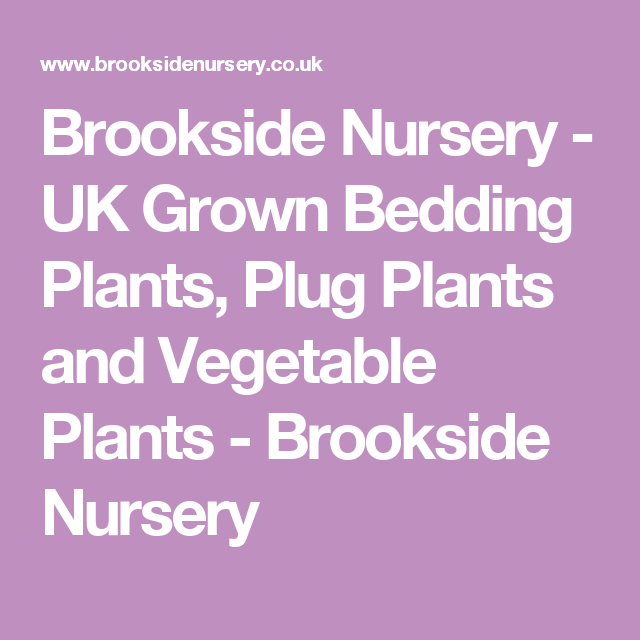 Brookside Nursery Uk Grown Bedding Plants Plug And Vegetable