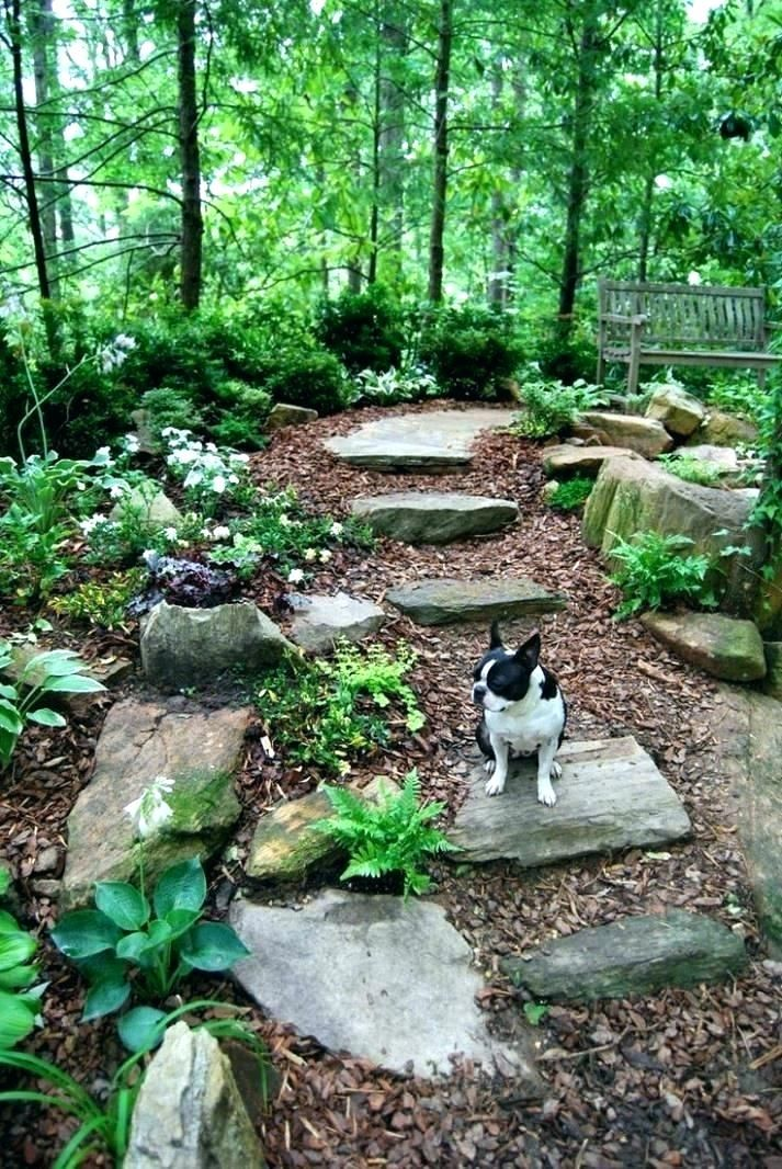 32 Landscape Ideas Wooded Backyard , Our backyard is ... on ideas for muddy backyards, ideas for sloping backyards, ideas for sloped backyards,