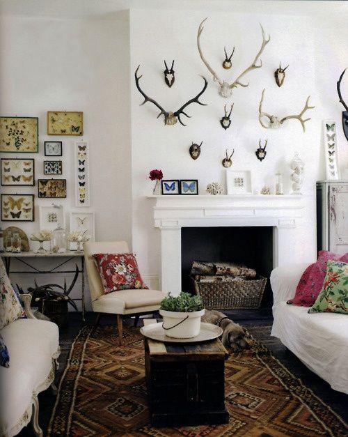 Angie S List Home Decor Interior Home Deer antler living room decor
