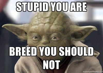 Master Yoda - Stupid you are BREED YOU SHOULD NOT   Yoda ...