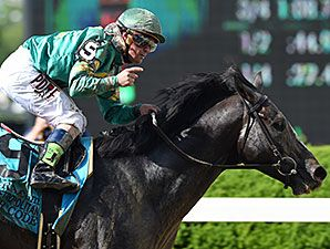 Honor Code turned on the afterburners and flew home June 6 in the $1.25 million Metropolitan Handicap (gr. I) at Belmont Park, with last year's Belmont Stakes (gr. I) winner Tonalist getting up for second.