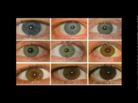 Eye Color And Blood Types Tesla Mythological Zeus And
