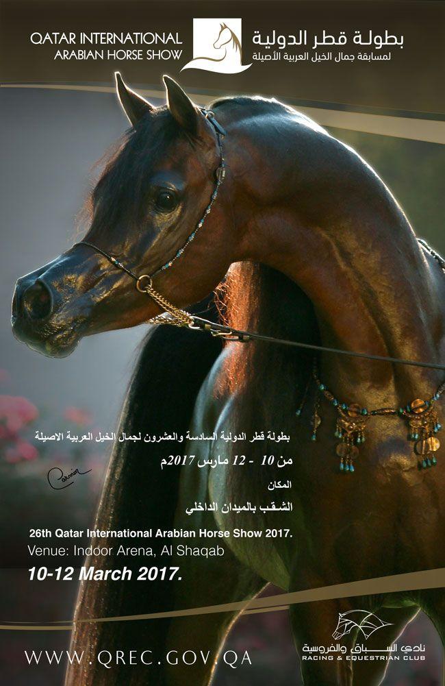 بطولة قطر الدولية الـ ٢٦ لجمال الخيل العربية Horses Show Horses Arabian Horse