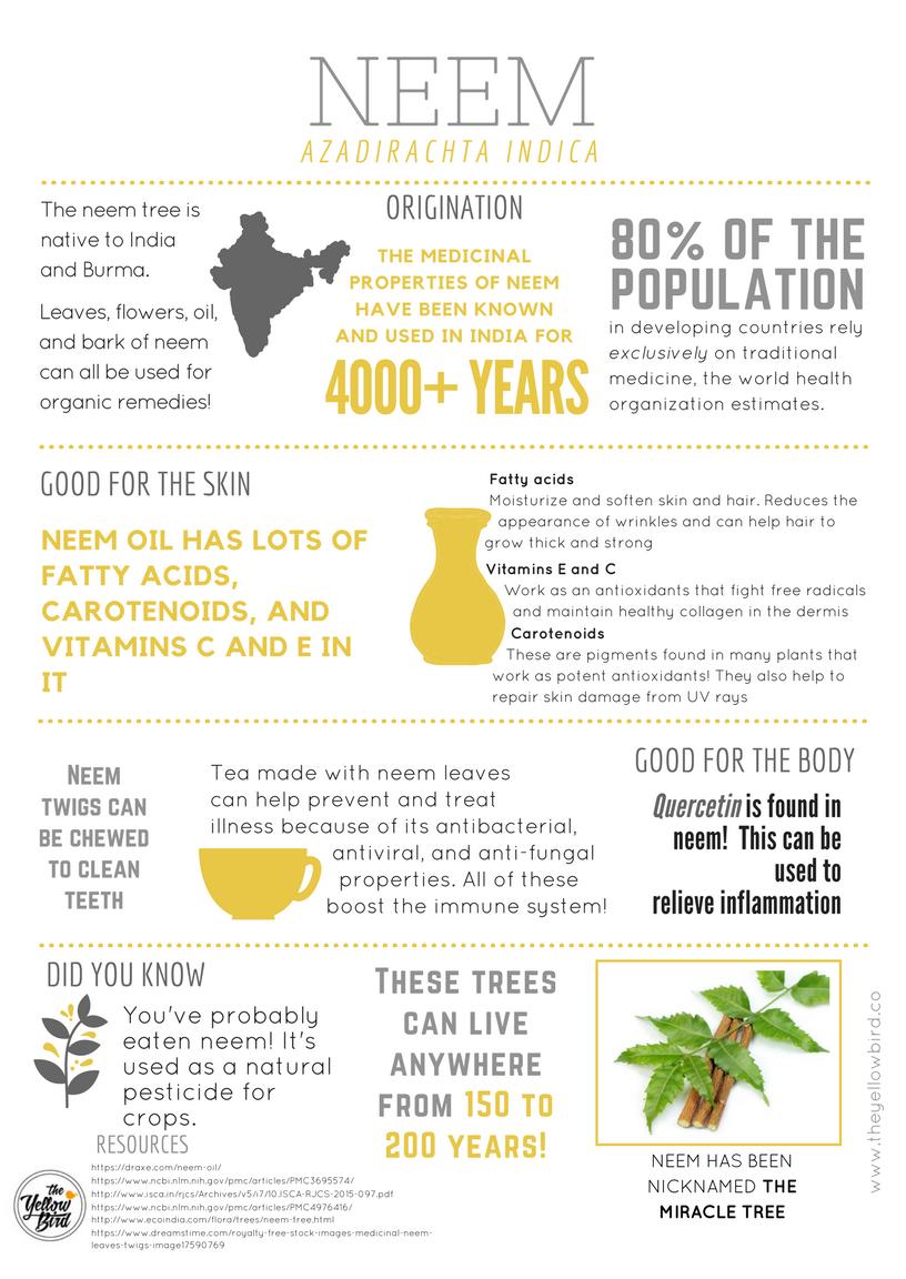 Blog Neem Natural Skin Care Best Natural Skin Care